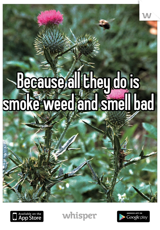 Because all they do is smoke weed and smell bad