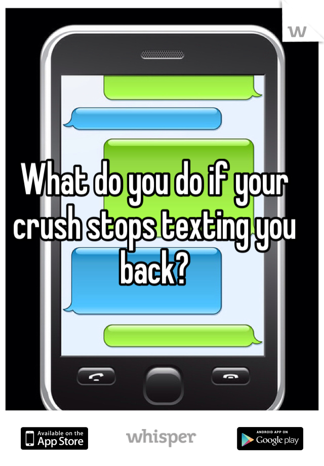 What do you do if your crush stops texting you back?