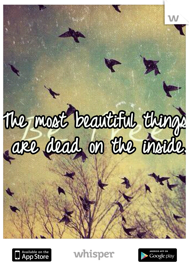 The most beautiful things are dead on the inside.