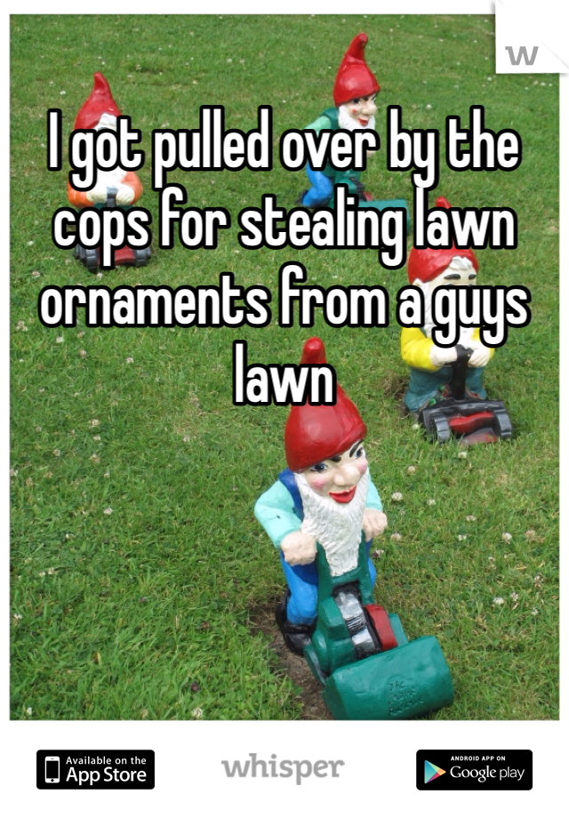 I got pulled over by the cops for stealing lawn ornaments from a guys lawn