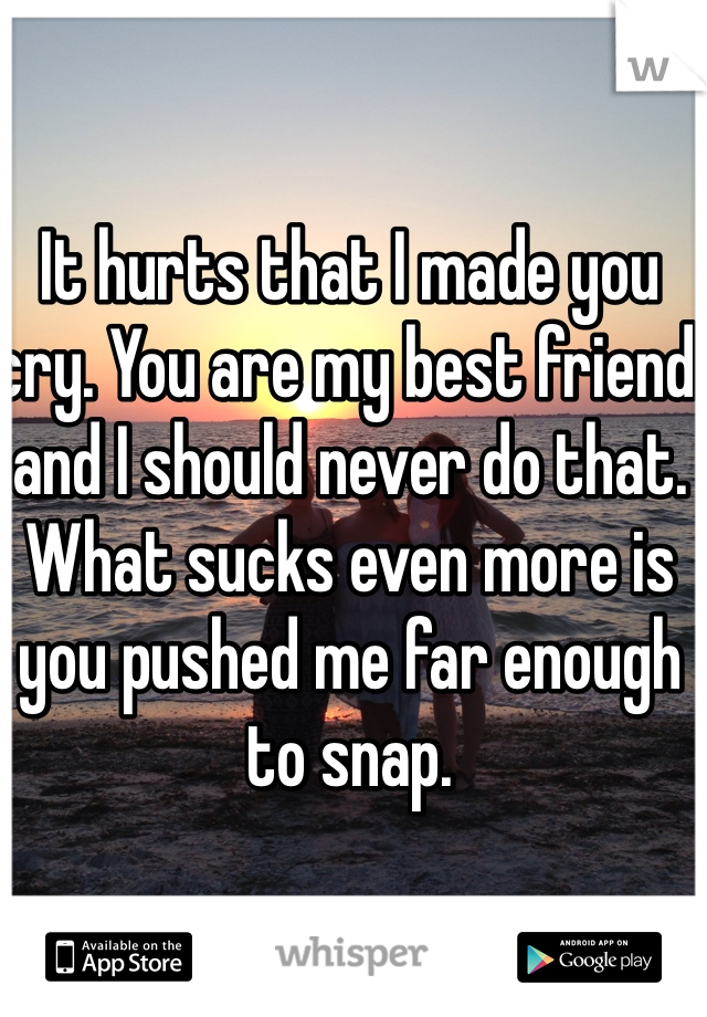It hurts that I made you cry. You are my best friend and I should never do that. What sucks even more is you pushed me far enough to snap.