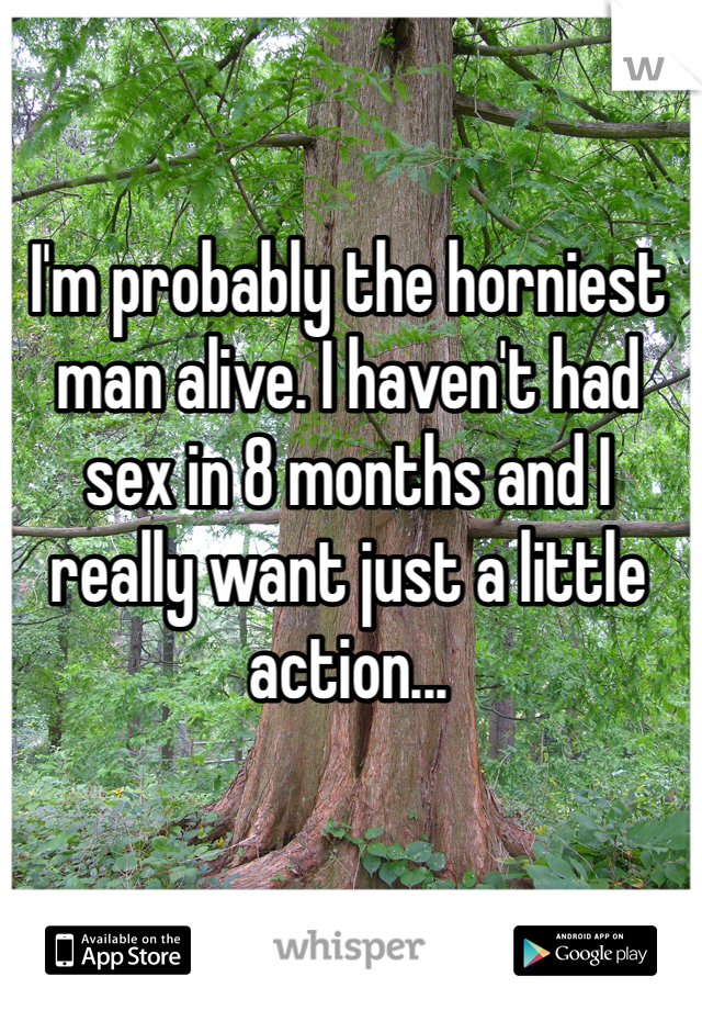 I'm probably the horniest man alive. I haven't had sex in 8 months and I really want just a little action...