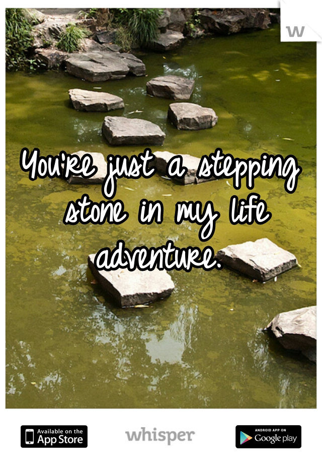 You're just a stepping stone in my life adventure.