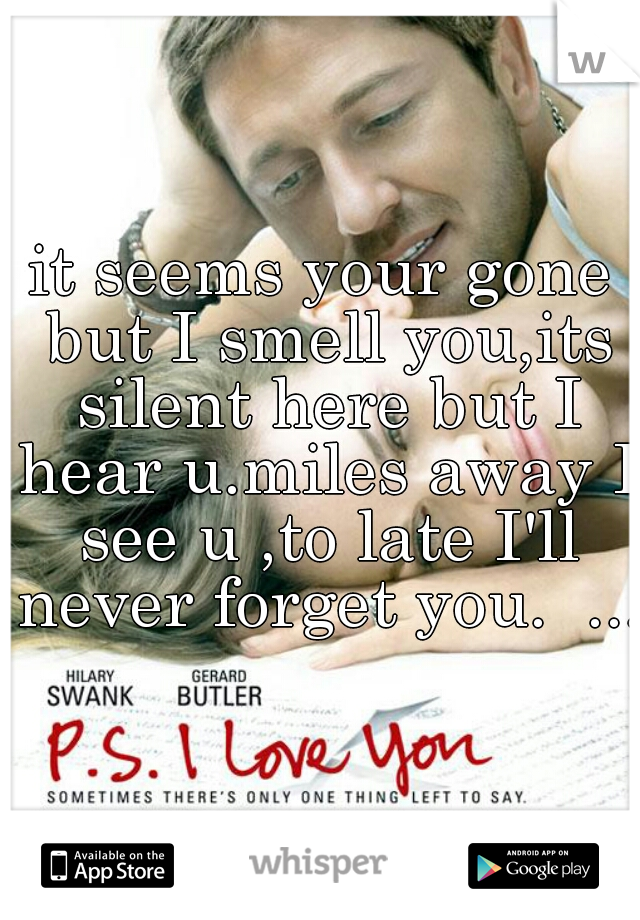 it seems your gone but I smell you,its silent here but I hear u.miles away I see u ,to late I'll never forget you.  ...
