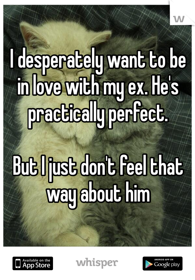 I desperately want to be in love with my ex. He's practically perfect.   But I just don't feel that way about him