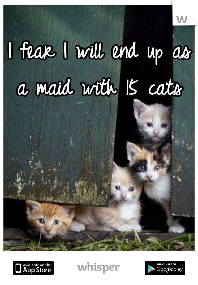 I fear I will end up as a maid with 15 cats