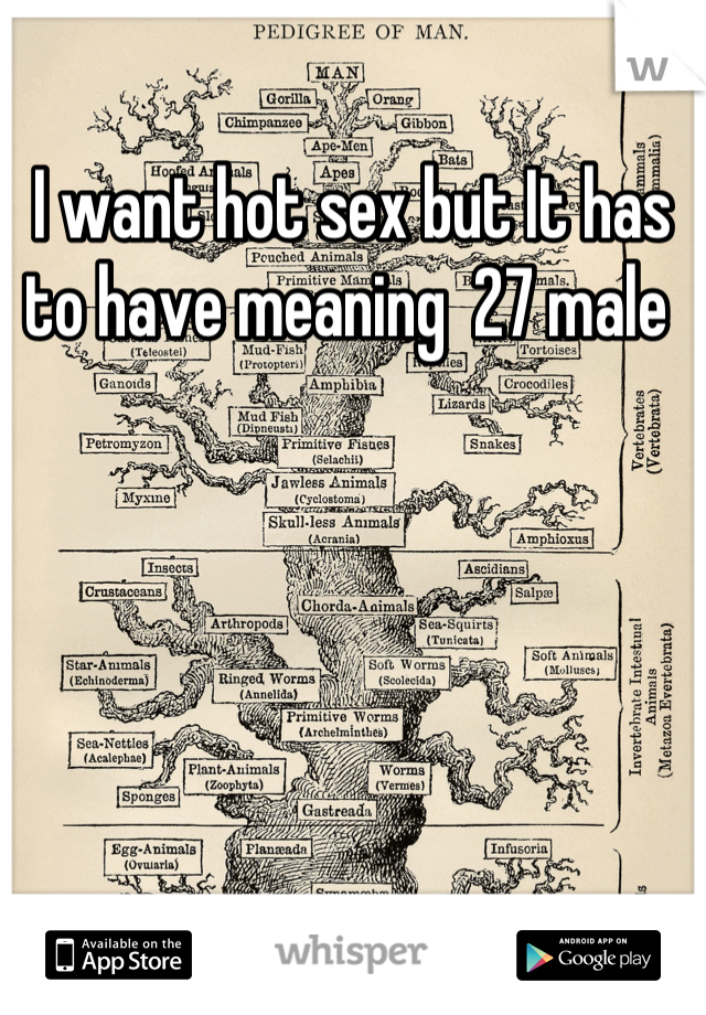 I want hot sex but It has to have meaning  27 male