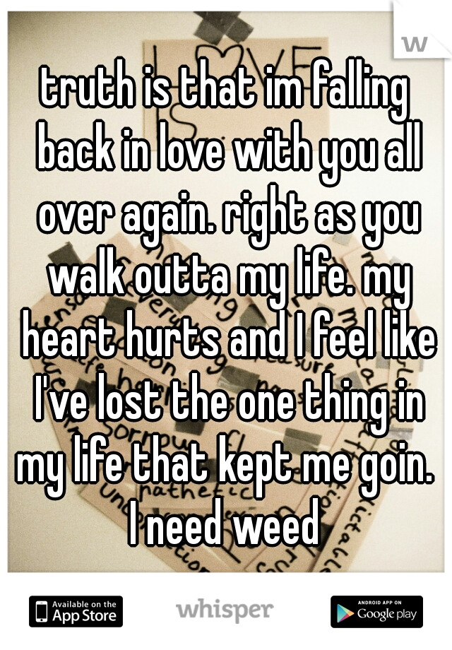 truth is that im falling back in love with you all over again. right as you walk outta my life. my heart hurts and I feel like I've lost the one thing in my life that kept me goin.  I need weed