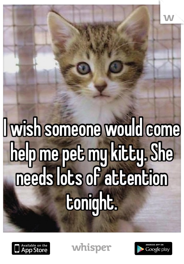 I wish someone would come help me pet my kitty. She needs lots of attention tonight.