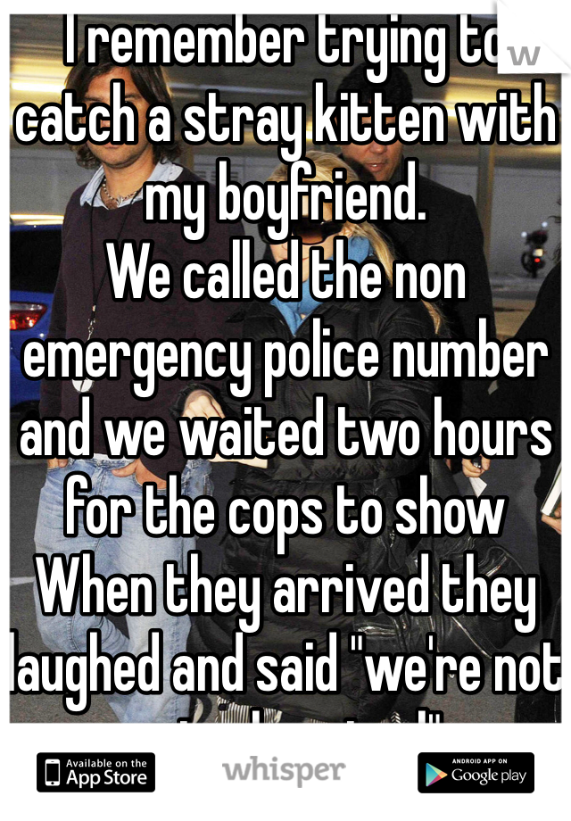 """I remember trying to catch a stray kitten with my boyfriend. We called the non emergency police number and we waited two hours for the cops to show When they arrived they laughed and said """"we're not animal control"""""""