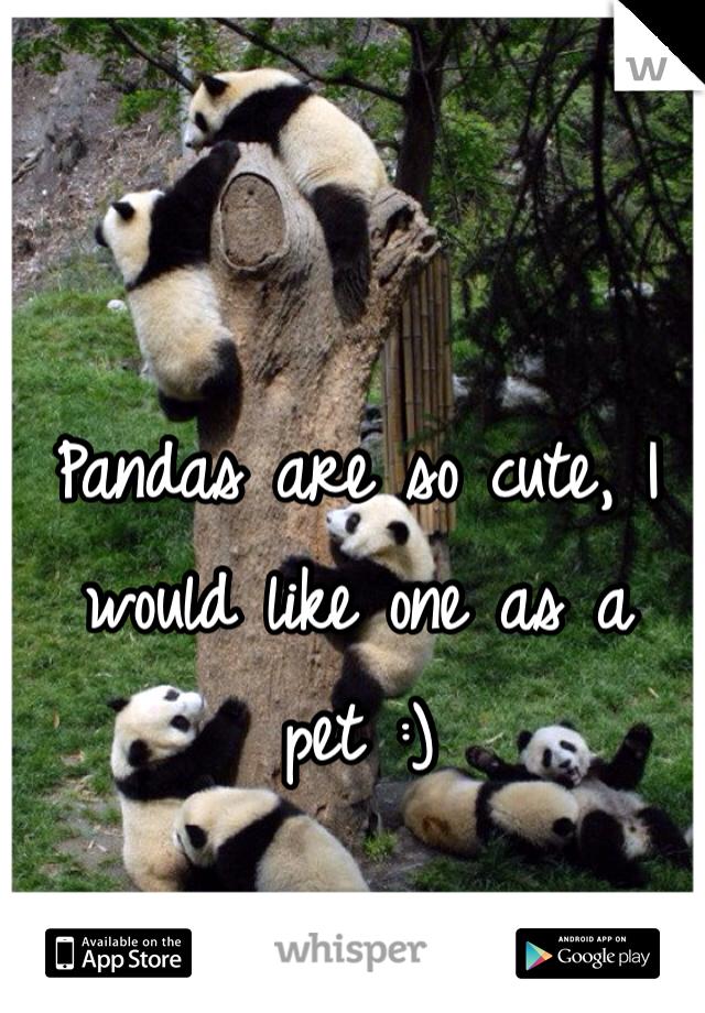 Pandas are so cute, I would like one as a pet :)