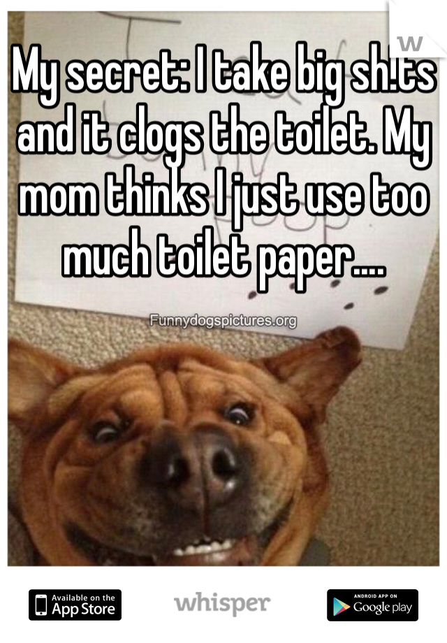 My secret: I take big sh!ts and it clogs the toilet. My mom thinks I just use too much toilet paper....