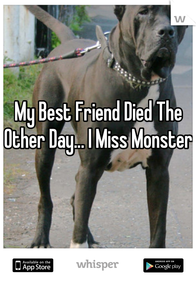My Best Friend Died The Other Day... I Miss Monster