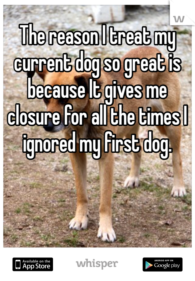 The reason I treat my current dog so great is because It gives me closure for all the times I ignored my first dog.
