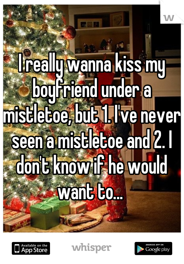 I really wanna kiss my boyfriend under a mistletoe, but 1. I've never seen a mistletoe and 2. I don't know if he would want to...