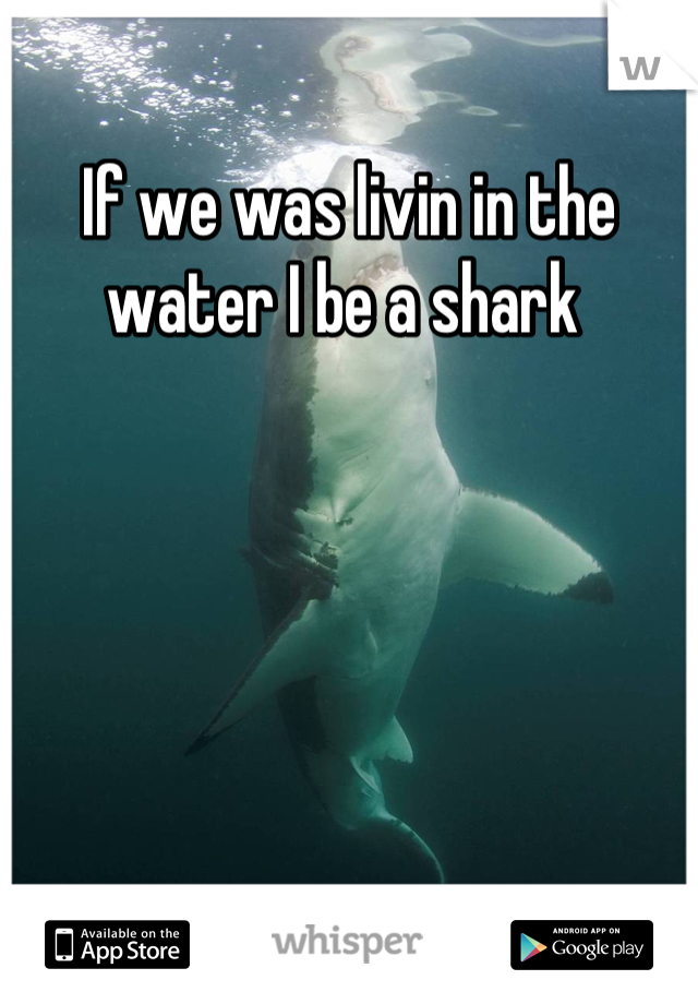 If we was livin in the water I be a shark