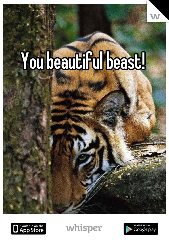 You beautiful beast!