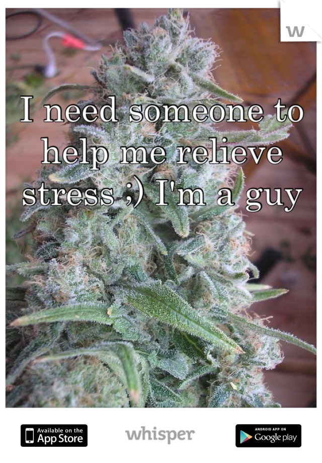 I need someone to help me relieve stress ;) I'm a guy