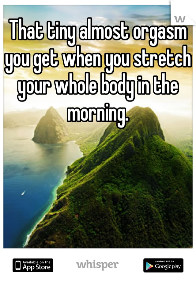 That tiny almost orgasm you get when you stretch your whole body in the morning.