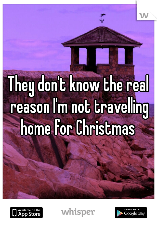 They don't know the real reason I'm not travelling home for Christmas