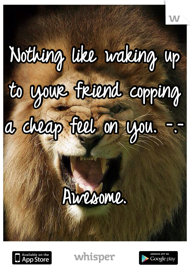 Nothing like waking up to your friend copping a cheap feel on you. -.-  Awesome.