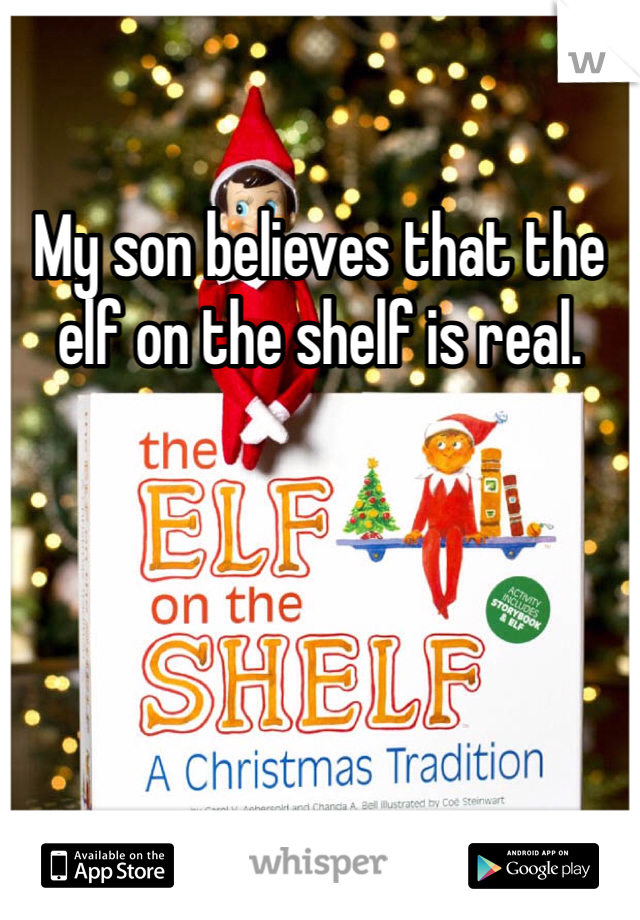 My son believes that the elf on the shelf is real.