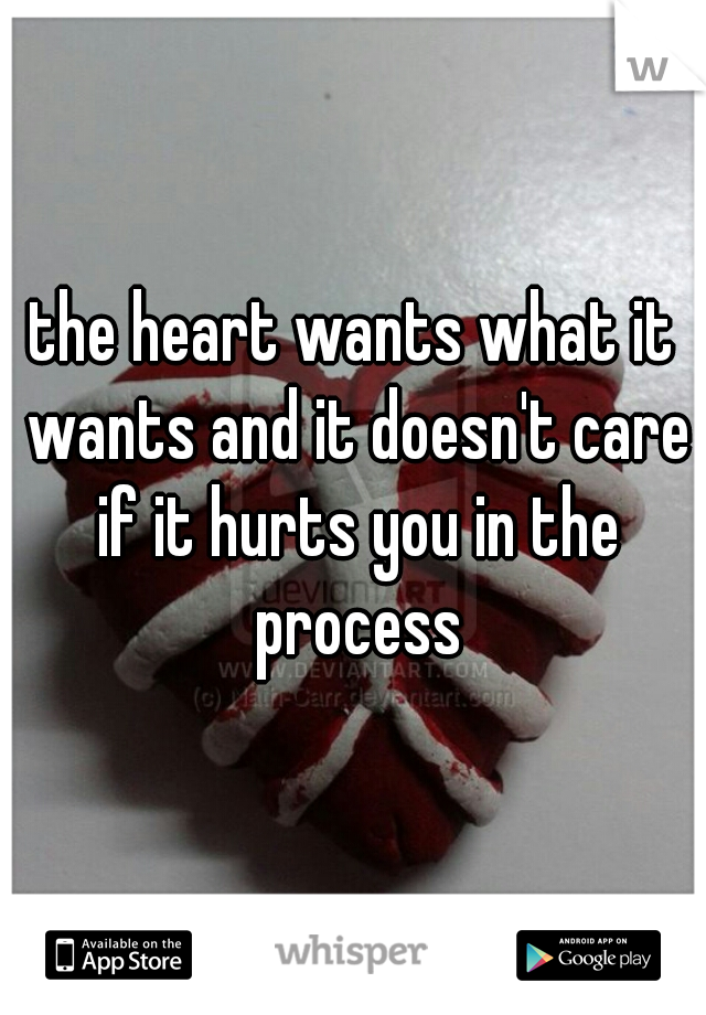 the heart wants what it wants and it doesn't care if it hurts you in the process