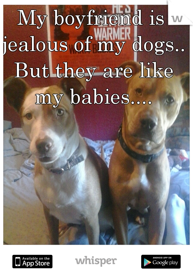 My boyfriend is jealous of my dogs.. But they are like my babies....