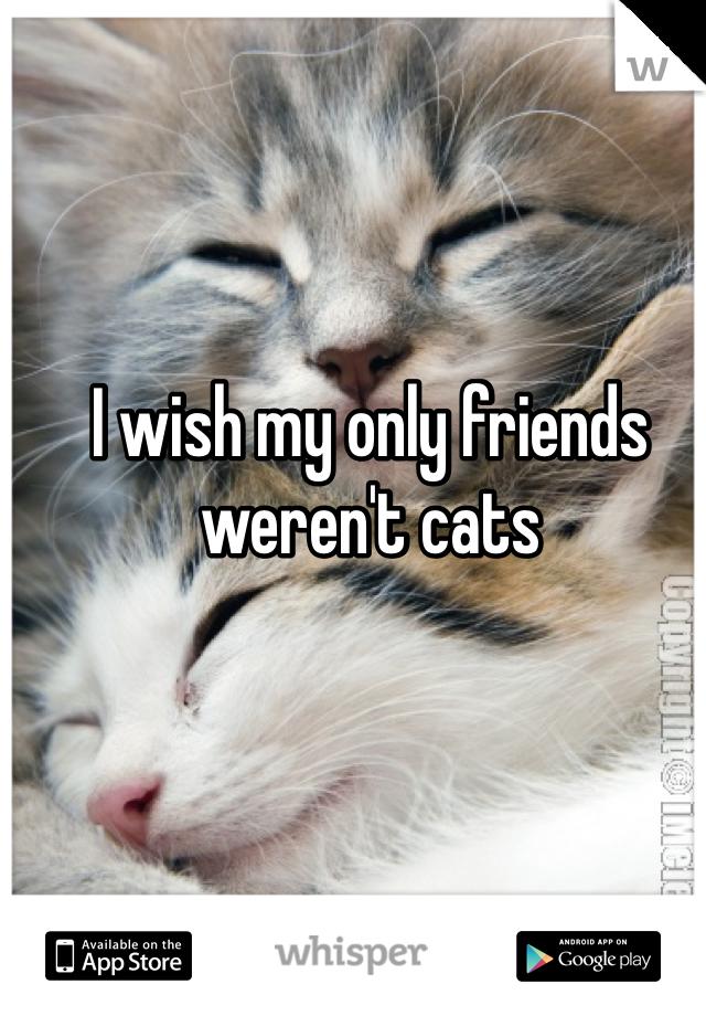 I wish my only friends weren't cats