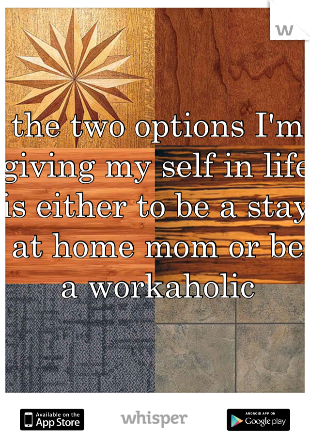 the two options I'm giving my self in life is either to be a stay at home mom or be a workaholic