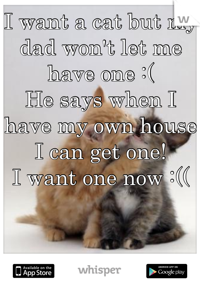 I want a cat but my dad won't let me have one :(  He says when I have my own house I can get one! I want one now :((