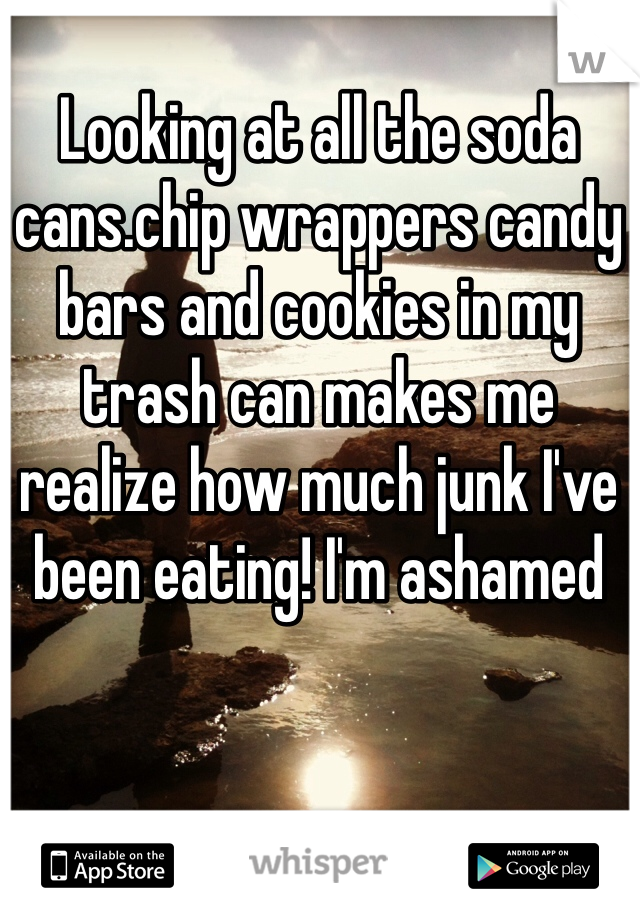 Looking at all the soda cans.chip wrappers candy bars and cookies in my trash can makes me realize how much junk I've been eating! I'm ashamed