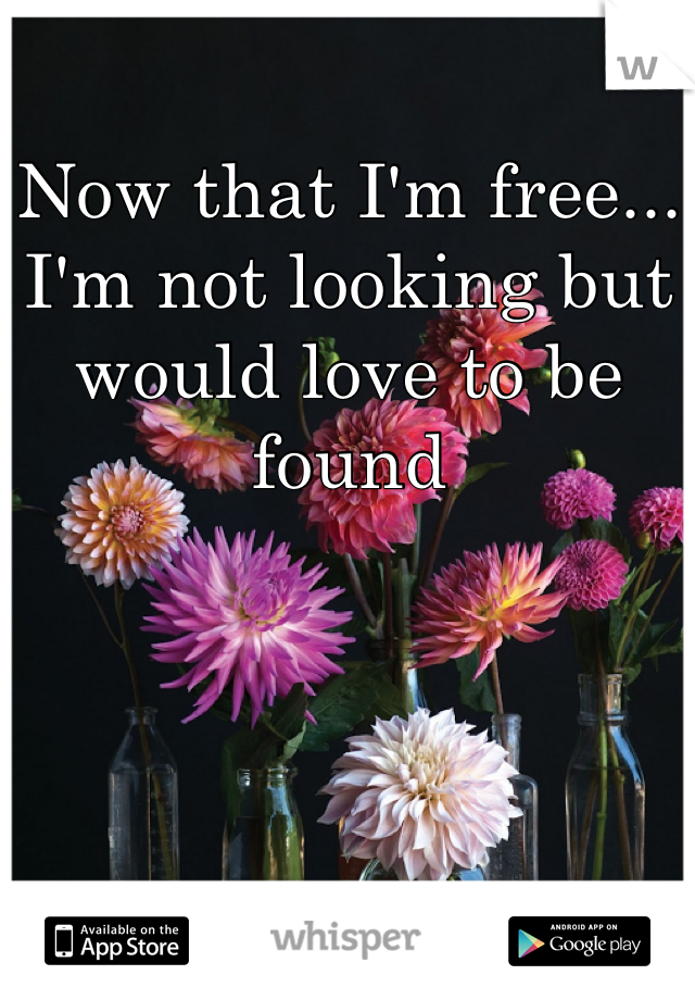 Now that I'm free... I'm not looking but would love to be found