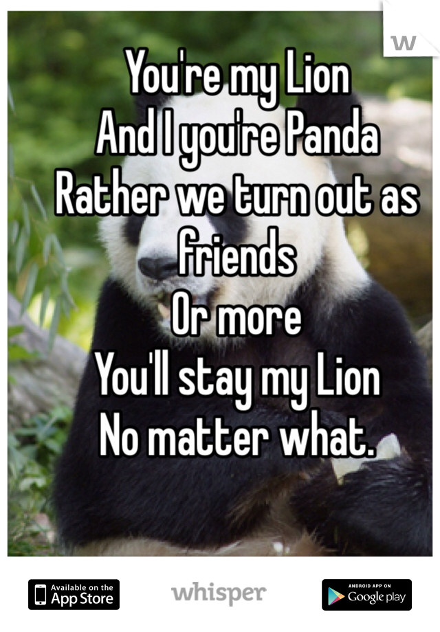 You're my Lion And I you're Panda Rather we turn out as friends Or more You'll stay my Lion  No matter what.