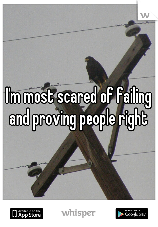 I'm most scared of failing and proving people right