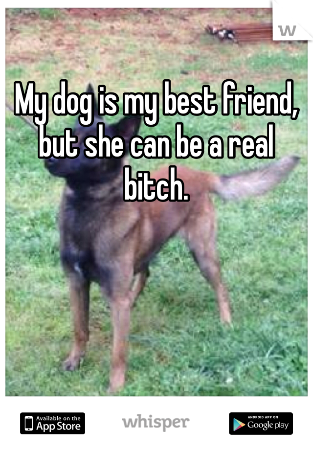 My dog is my best friend, but she can be a real bitch.
