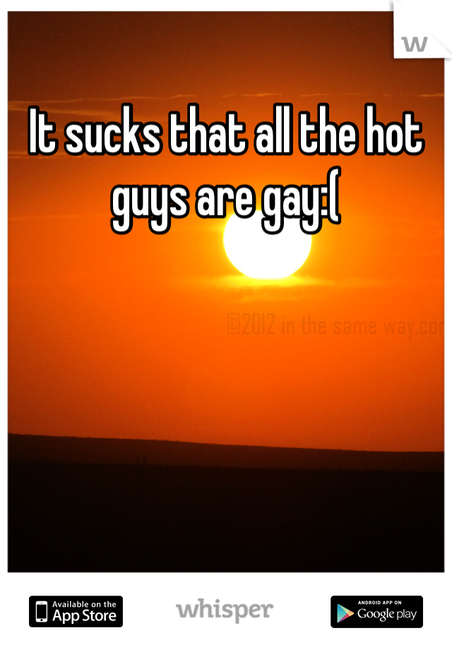 It sucks that all the hot guys are gay:(