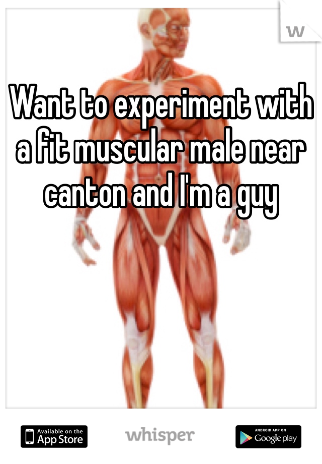 Want to experiment with a fit muscular male near canton and I'm a guy
