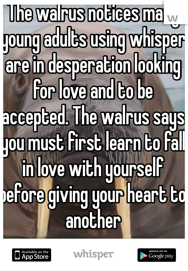 The walrus notices many young adults using whisper are in desperation looking for love and to be accepted. The walrus says you must first learn to fall in love with yourself before giving your heart to another