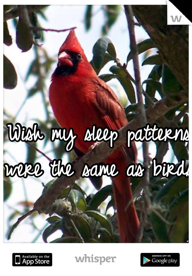Wish my sleep patterns were the same as birds