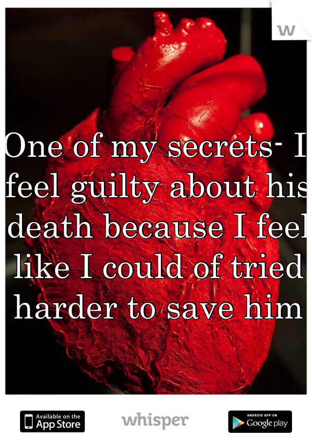 One of my secrets- I feel guilty about his death because I feel like I could of tried harder to save him