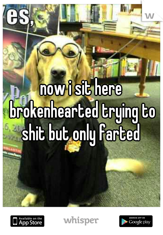 now i sit here brokenhearted trying to shit but only farted