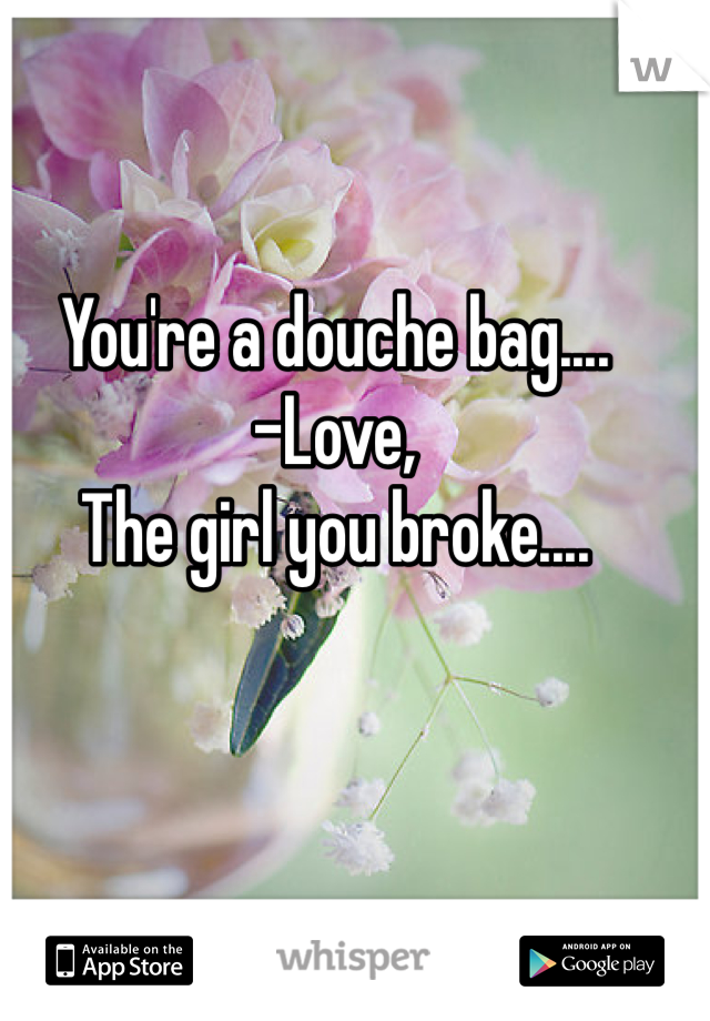 You're a douche bag.... -Love, The girl you broke....