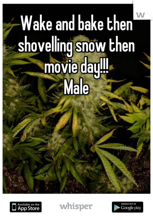 Wake and bake then shovelling snow then movie day!!!  Male