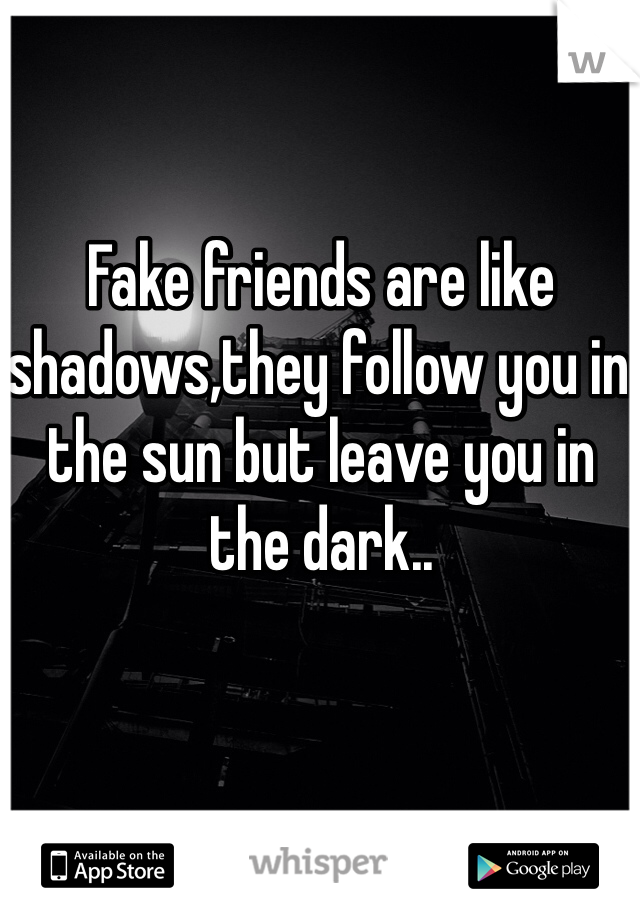 Fake friends are like shadows,they follow you in the sun but leave you in the dark..