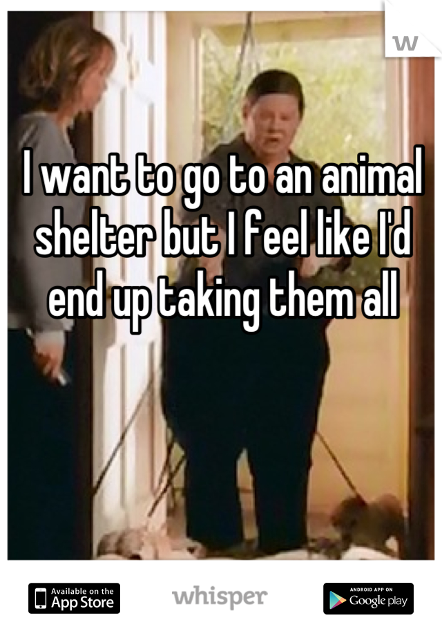 I want to go to an animal shelter but I feel like I'd end up taking them all