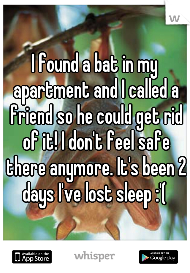 I found a bat in my apartment and I called a friend so he could get rid of it! I don't feel safe there anymore. It's been 2 days I've lost sleep :'(