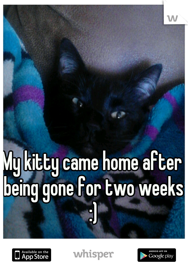 My kitty came home after being gone for two weeks :)