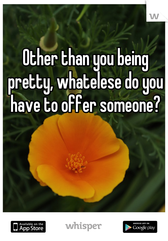 Other than you being pretty, whatelese do you have to offer someone?