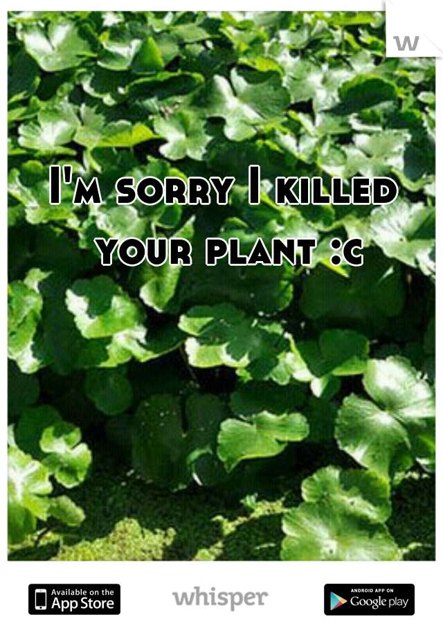 I'm sorry I killed your plant :c